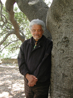 Ishmael Reed, Author